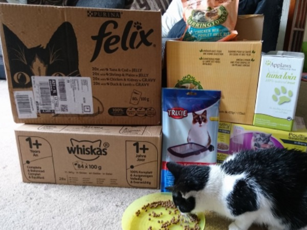 donations-cat-food