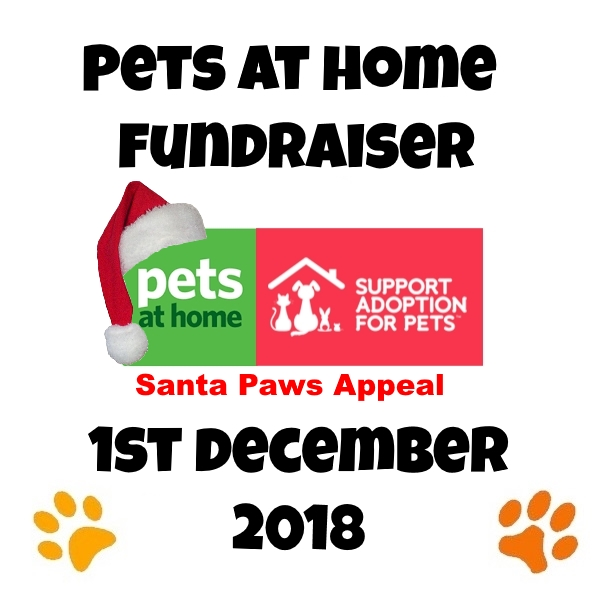 santa-paws-appeal-pets-at-home