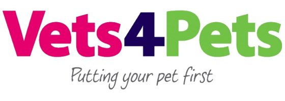 vets-4-pets