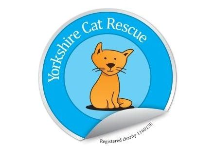 yorkshire-cat-rescue